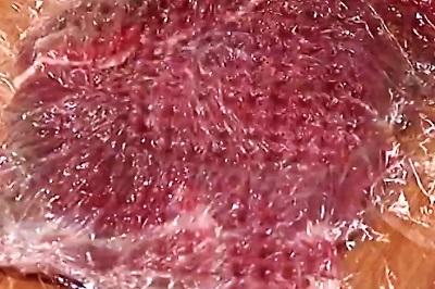 befstroganov myaso otbito