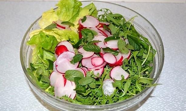 salat s listyami latuka. rukkoloi i redisom gotovitsya