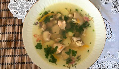 sup s veshenkami i kuricei