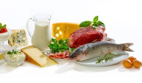 Продукты содержащие белок в большом количестве